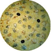 Pizza 4 fromages crème de la Pizzéria La Tour de Pizz à Bourg les Valence